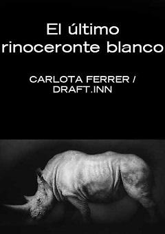 obra-rinoceronte